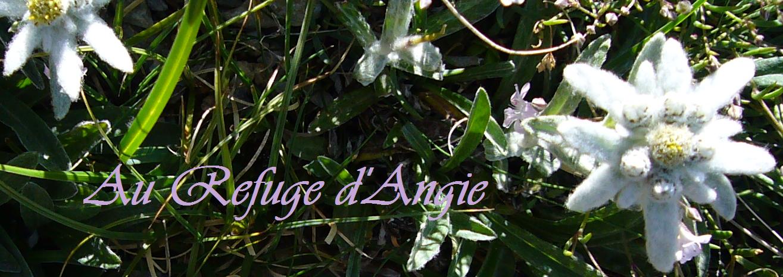Au refuge d'Angie