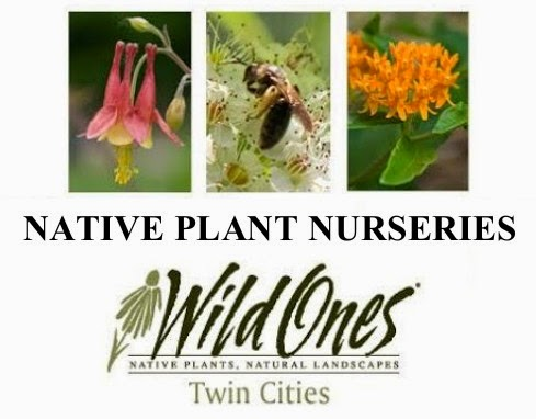 Native Plant Nurseries