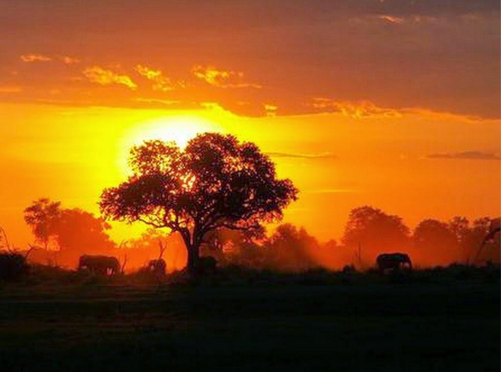 fotografias-de-paisajes-naturales-para-descargar-gratis