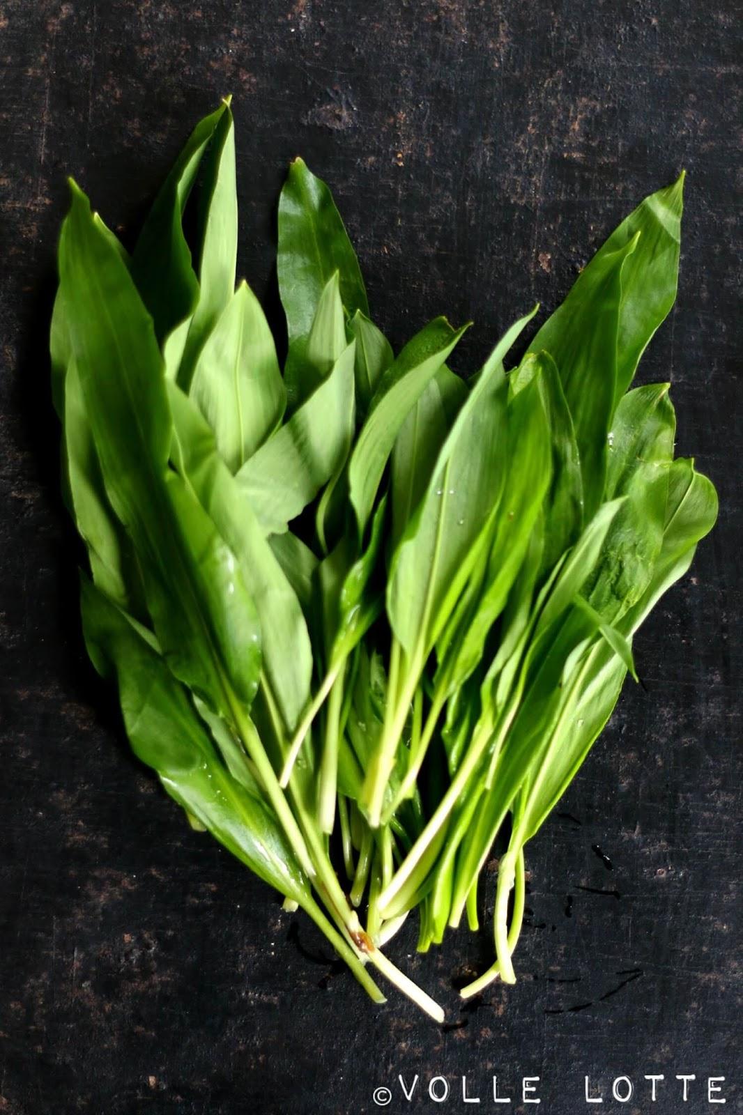 Crepe; Möhren, Frühling, Ideen, Rezept