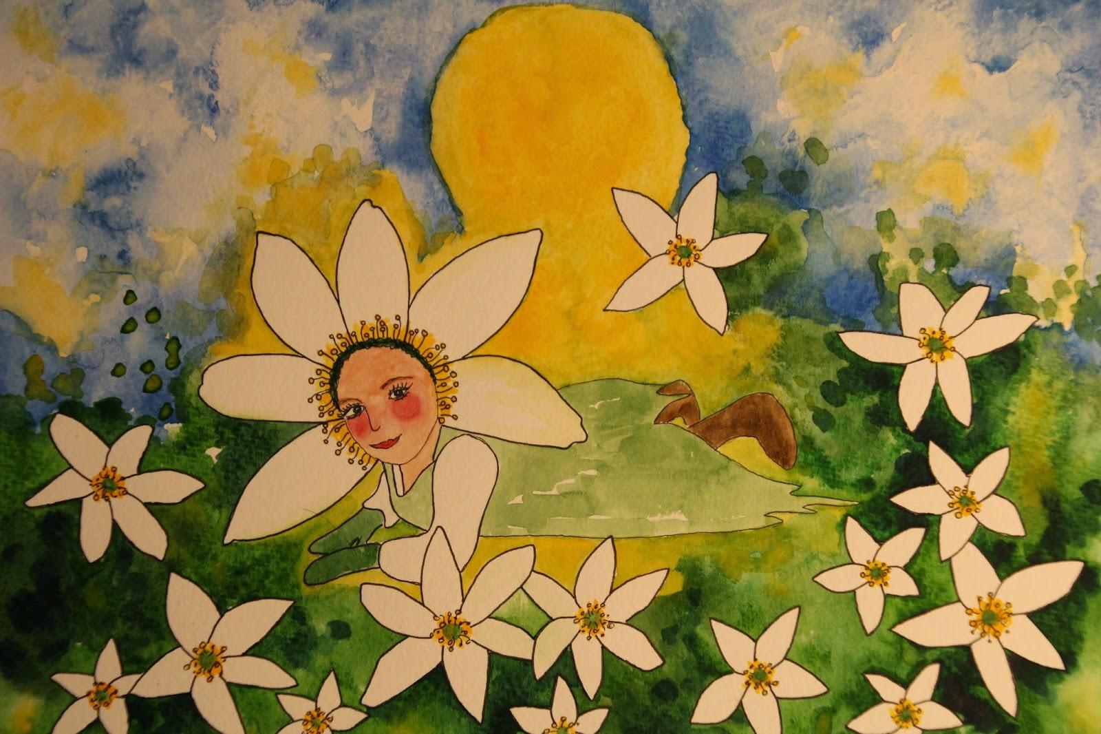 vitsippa akvarell carolin zander