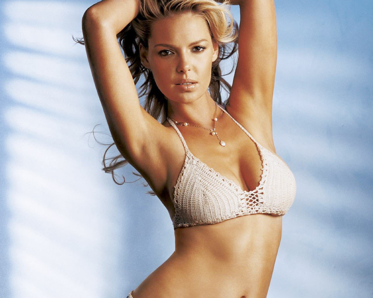 http://2.bp.blogspot.com/-JSvdO7diwaY/TyV5pZox0fI/AAAAAAAAB8g/sKcN5dFDUM0/s1600/katherine-heigl-looking-sexy-55479.jpg