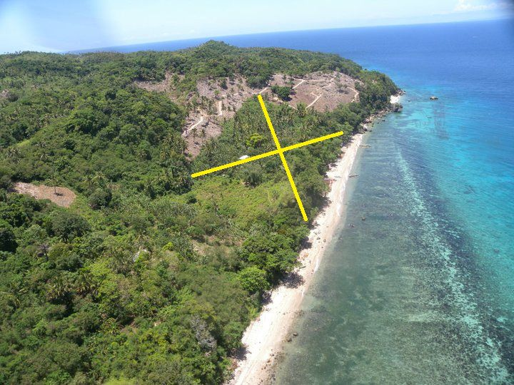 Carabao Island Lot For Sale