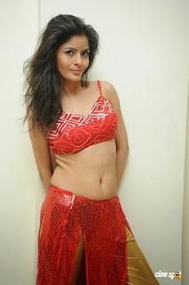 Actress Gehana Vasista Navel Show Photos