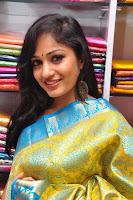 Madhavi Latha Saree Stills