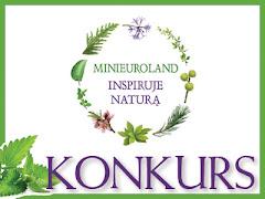KONKURS MINIEUROLAND