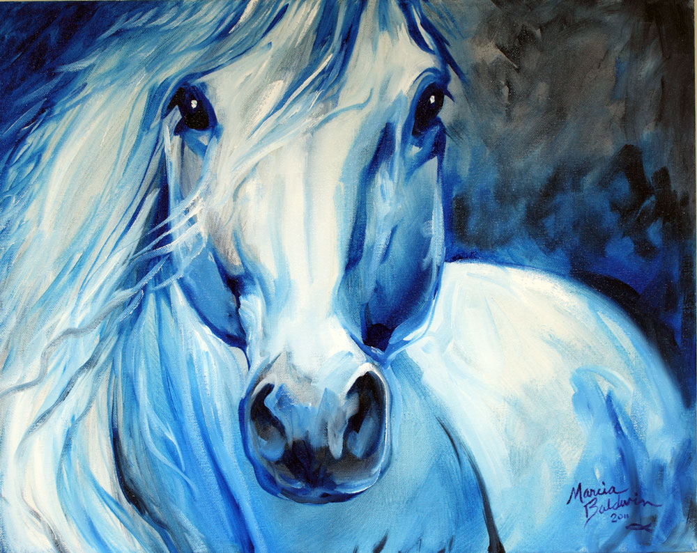 grey ghost equine 20x16 horse art original oil painting by marcia baldwin