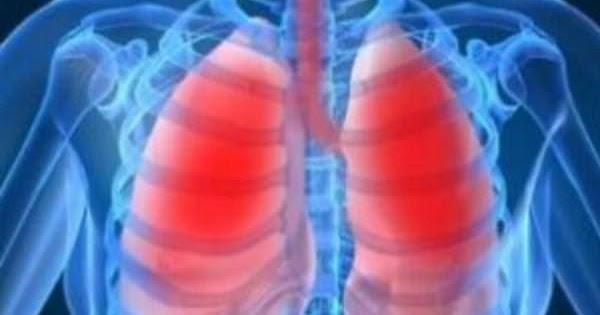 吸煙的人該吃什麼清肺?(為父親,丈夫,吸煙的朋友轉,會長壽幾十年)