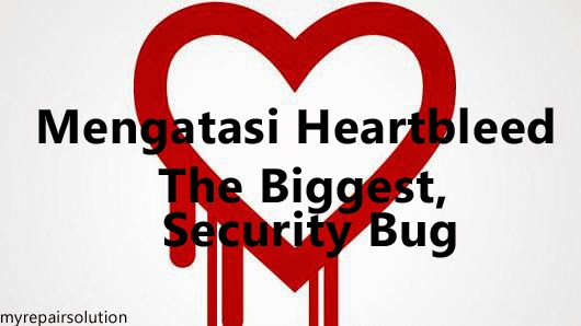 Heartbleed security bug