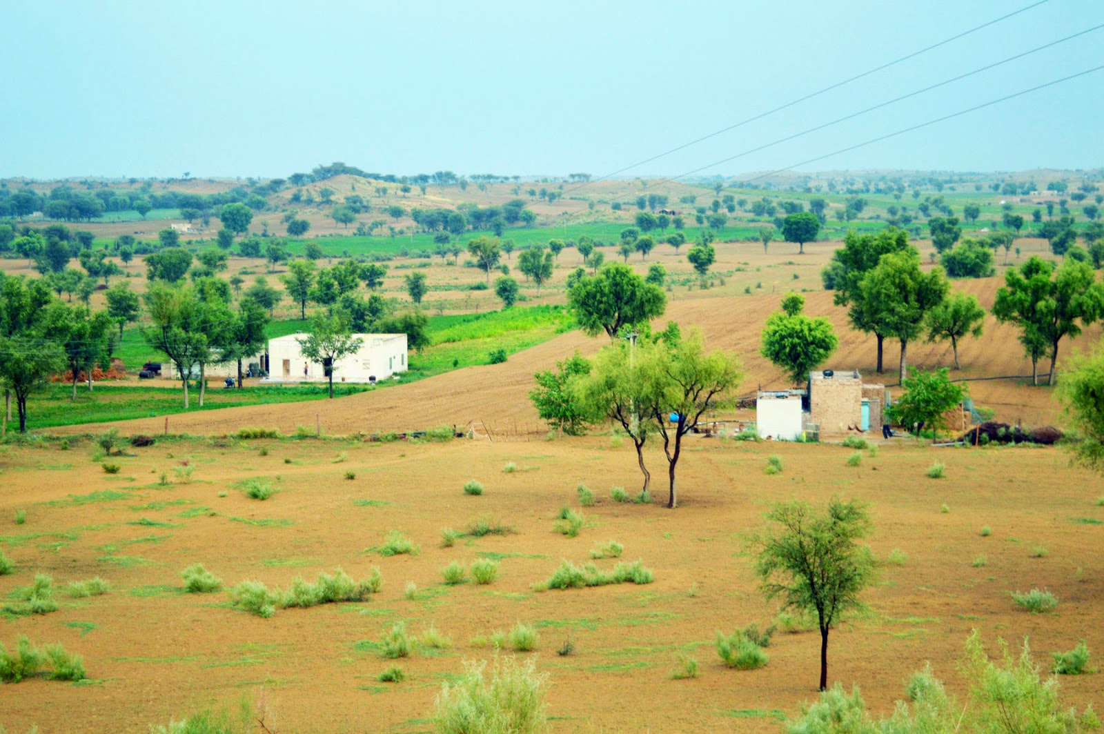 Farm house village rajasthan