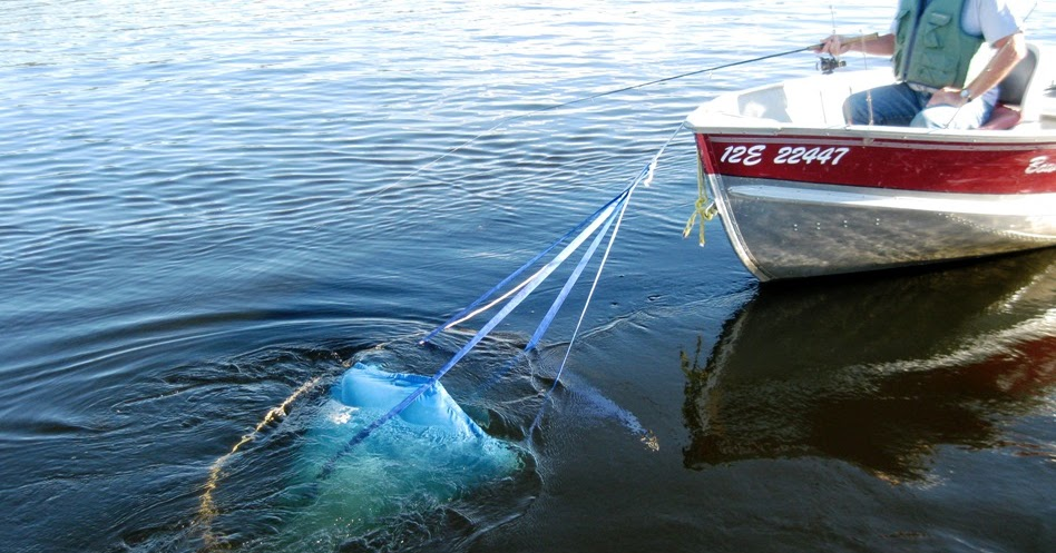 Bow narrows camp blog on red lake ontario a great for Red lake ontario fishing