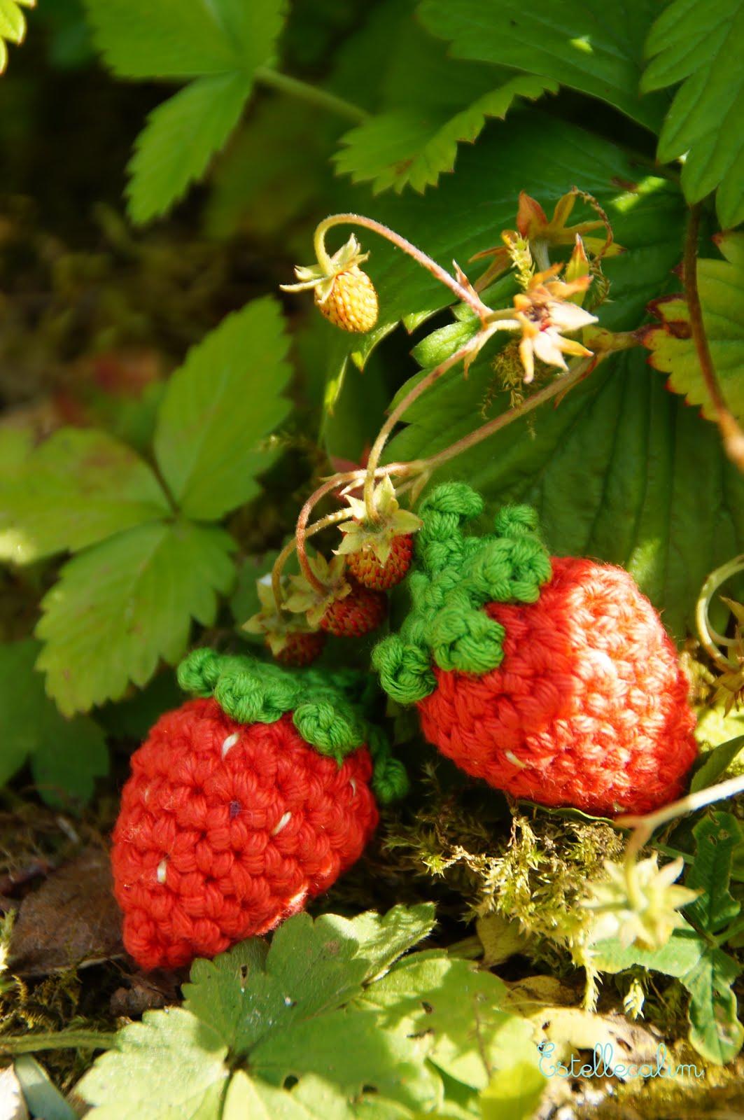 Des fraises pour la dinette !