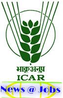 icar-recruitment-newsatjobs