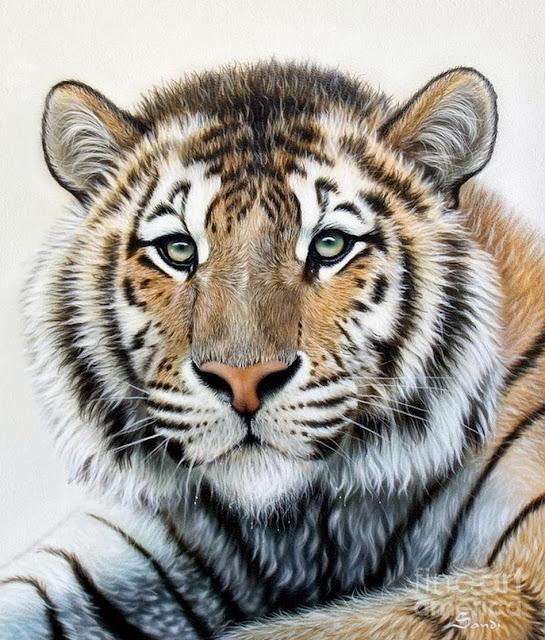pinturas-de-animales-al-oleo