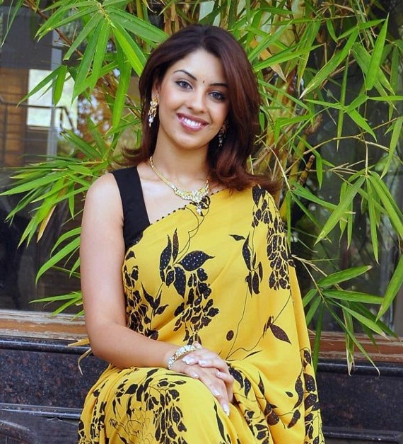richa gangopadhyay in saree hot images