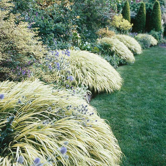 7 awesome ornamental grasses for every cottage garden for Japanese mounding grass
