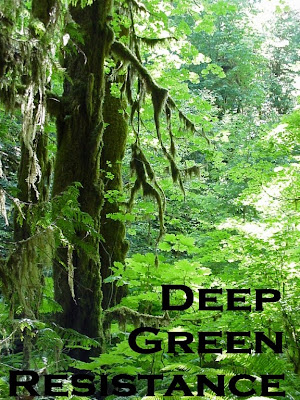 Deep Green Forest