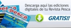 Descarga gratis la revista Pesca