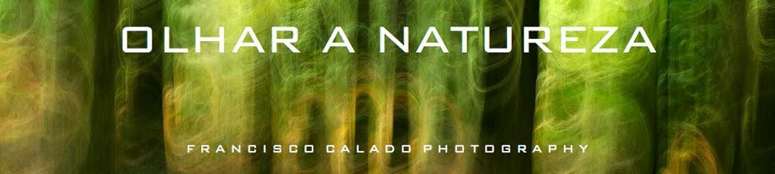 Olhar a Natureza
