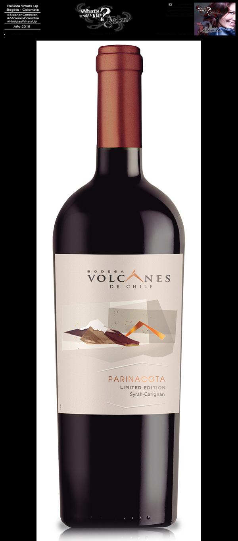 mercado-Bodega-Volcanes-Chile-paladares-exigentes