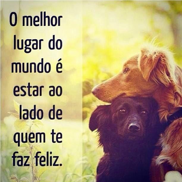 Amado Fotos de Cachorros com frases para o Facebook - Fotos para Facebook VG13