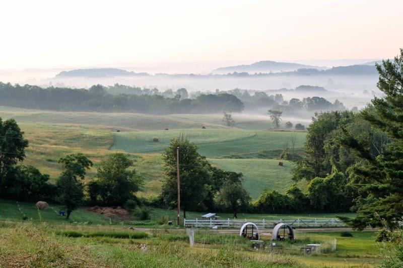 Foggy sunrise over Litengård - Little Farm