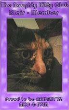Naughty Kitty Club Member