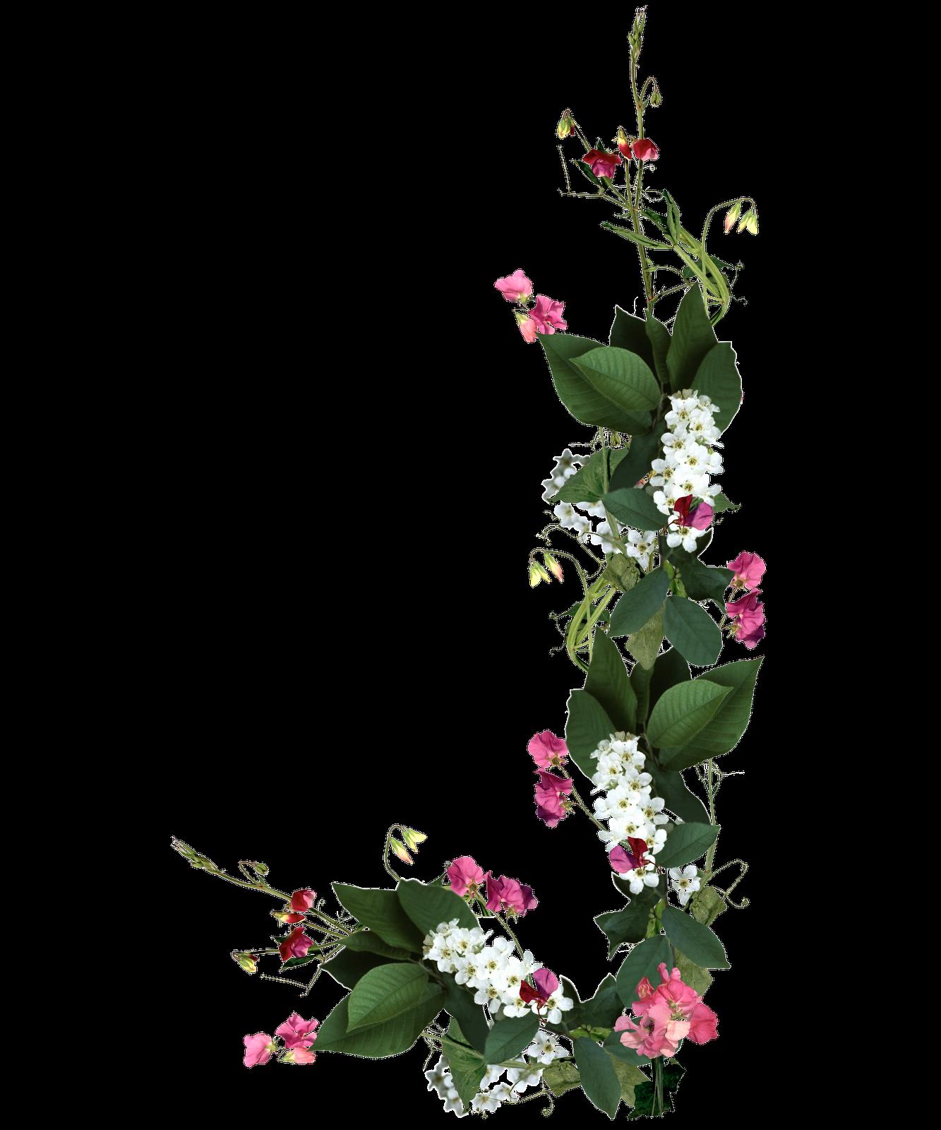 Descargar marcos de flores Uptodown - Marcos De Flores Para Decorar Fotos Gratis