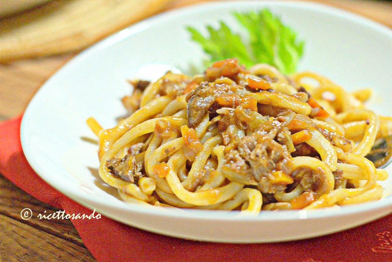 Pici con la nana ricetta di pasta fatta in casa con ragù d'anatra
