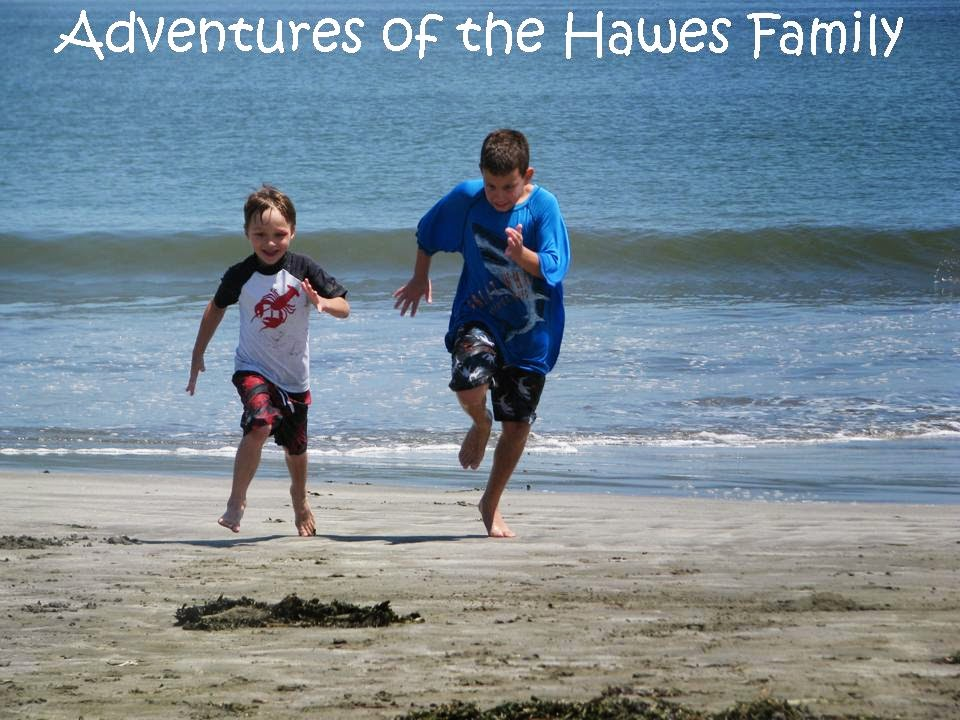 Adventures of The Hawes Family