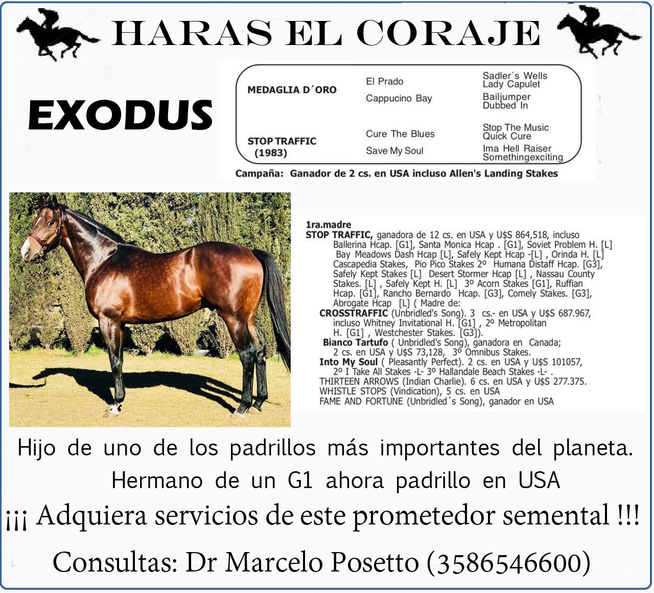 HS EL CORAJE PADRILLO