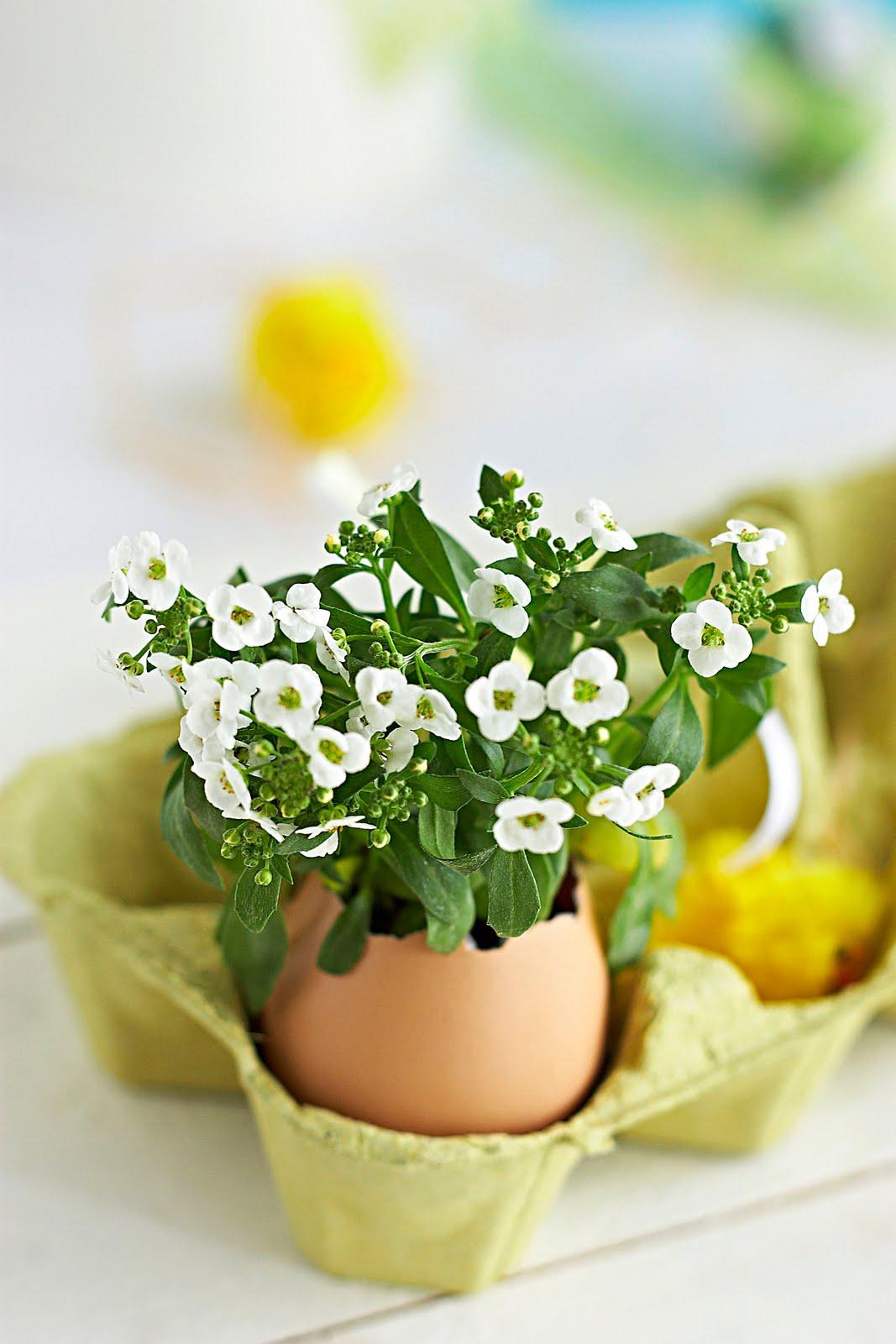 za kraj svima želim Sretan Uskrs!!!