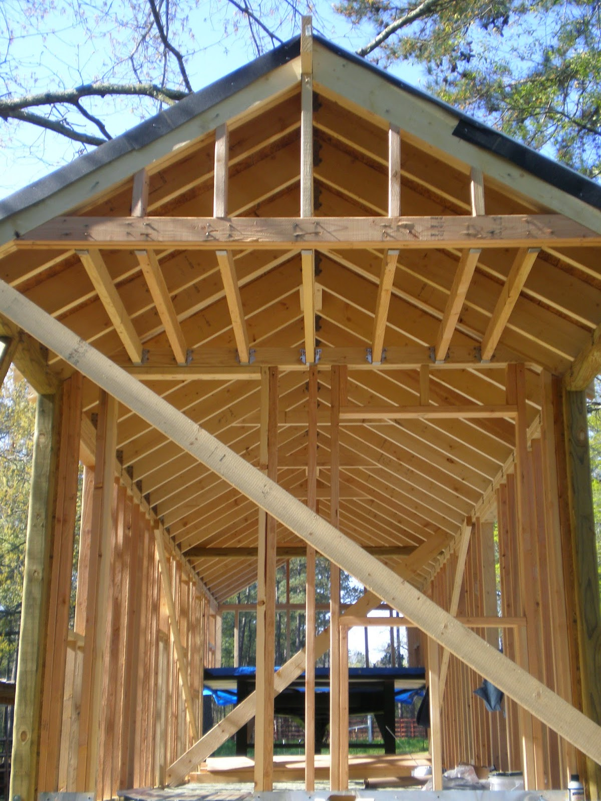 Exterior Roof Framing : A tiny home companion the roof is on