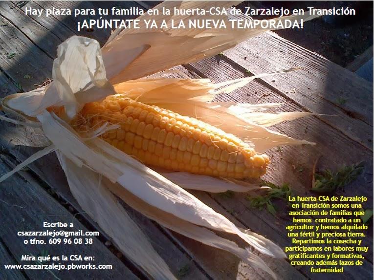 www.csazarzalejo.pbworks.com