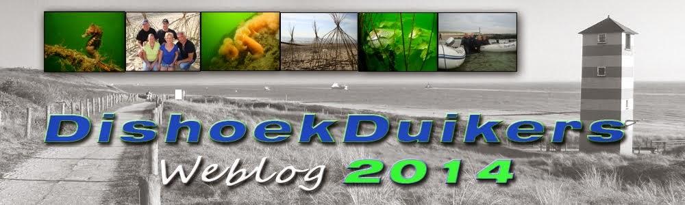 dishoekduikers 2014