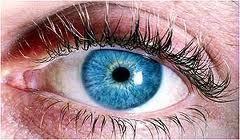hypertension eye damage disorders