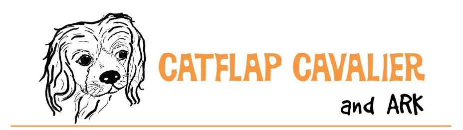 Catflap Cavalier