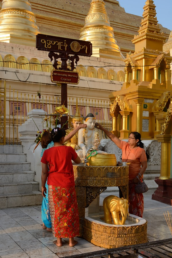 Devotes puring water on a Buddha at Shedagon Pagoda