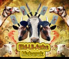 Bakra Eid / Eid Ul Adha Collection With Animal Images