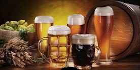 Guía de cervezas artesanales de la Región de Los Ríos