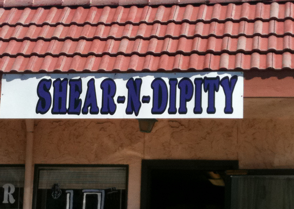 Shear n Dippity, funny salon names