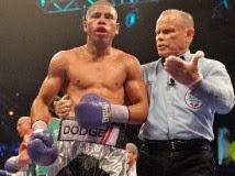 Renuncias en Asociación Oficiales de Boxeo