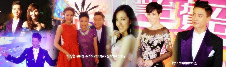 Just TVB Artist