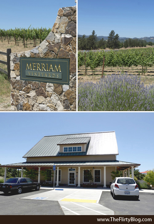 Merriam Vineyards Wine Tasting