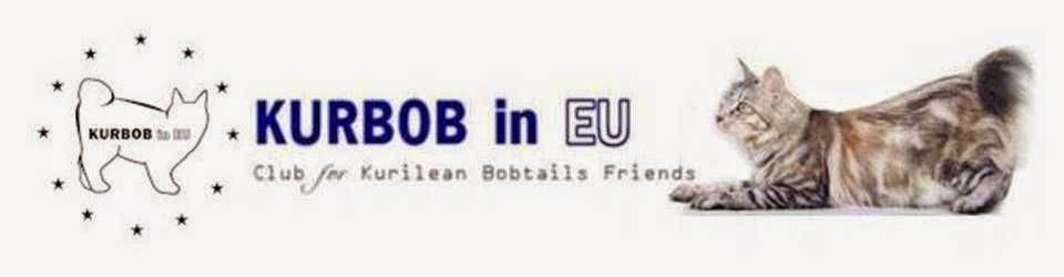 KurBob in EU