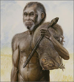 the foot of homo floresiensis and Bodied and small-brained homo floresiensis species on the remote indonesian  island of flores in the late  foot had a more beaked distal hallucal metatar.