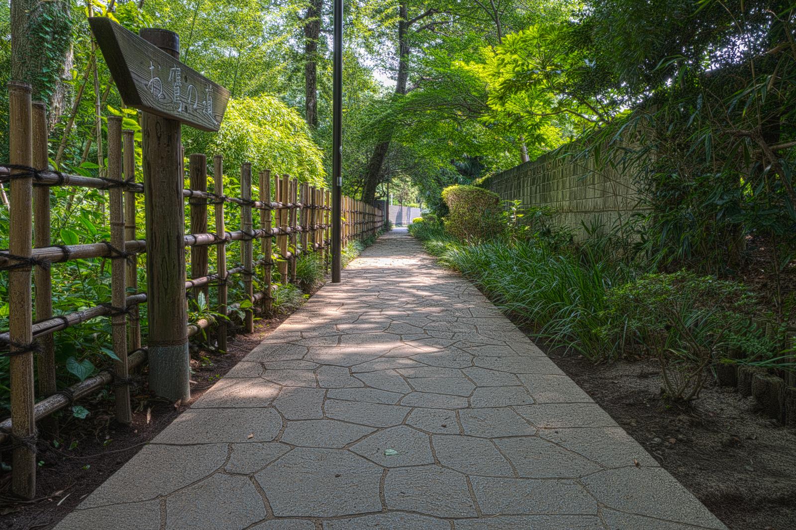 お鷹の道、清流沿いの小路の写真