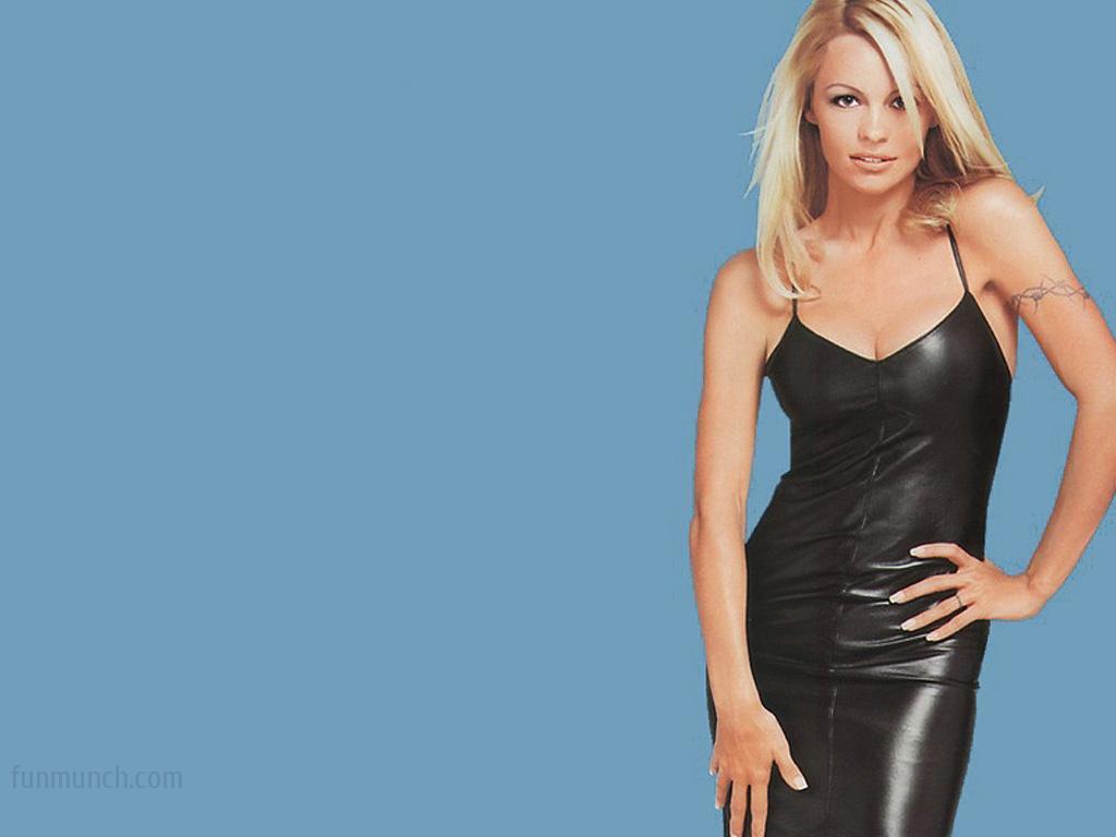 Pamela Anderson - Biography of Pamela Anderson, Hollywood ...