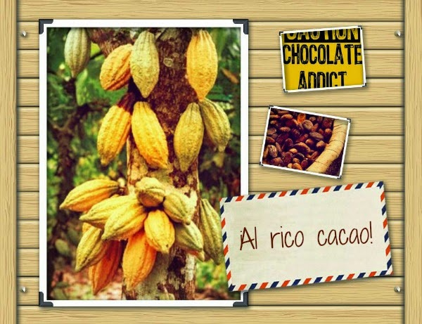 Cocinando con chocolate cacao