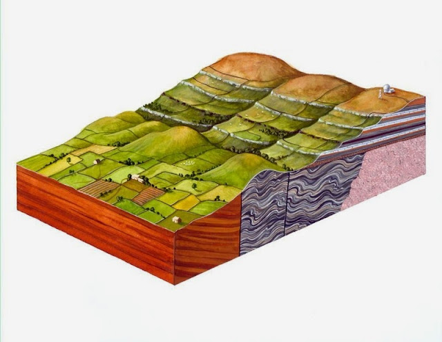 Gouache painting showing block diagram of Pennine escarpment. This painting shows the main features of the Pennine escarpment. The North Pennine hills (on the right) are composed of horizontal beds of Carboniferous rocks. These rocks rest on older, folded Ordovician slates and volcanic rocks. Faults separate the escarpment from the red Permo-Triassic sandstones of the Vale of Eden. The terracing on the North Pennine hills is the result of weathering of a sequence of alternately hard and soft Carboniferous rocks. This sequence is composed of sandstone, shale and limestone; the harder limestone layers clearly stand out on the hillsides. The Weardale Granite lies beneath this sequence. The North Pennines area in northern England has been designated an Area of Outstanding Natural Beauty and is also the site of Britain's first 'European Geopark'. The area is one of high fells, open moorland and wide dales. The unique character of the area owes much to human activity over hundreds of years, especially in relation to mining of the mineral deposits in the rocks.